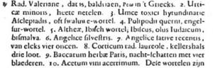 J. B. van Helmont, Dageraed, Rotterdam 1659, p. 384