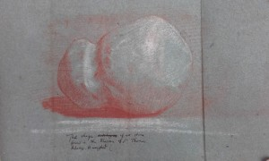 Stone found in the bladder of Thomas Adams, late 17th century. Royal Society Classified Papers, vol. 14i, document 22. Reproduced by permission.