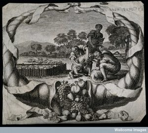 An allegory of plenty: a scene of sheep-shearing with a corn Credit: Wellcome Library, London.