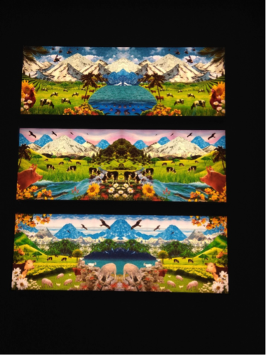Fig. 7. Three landscapes created by Uli Westphal. Image credit: Catherine Price.